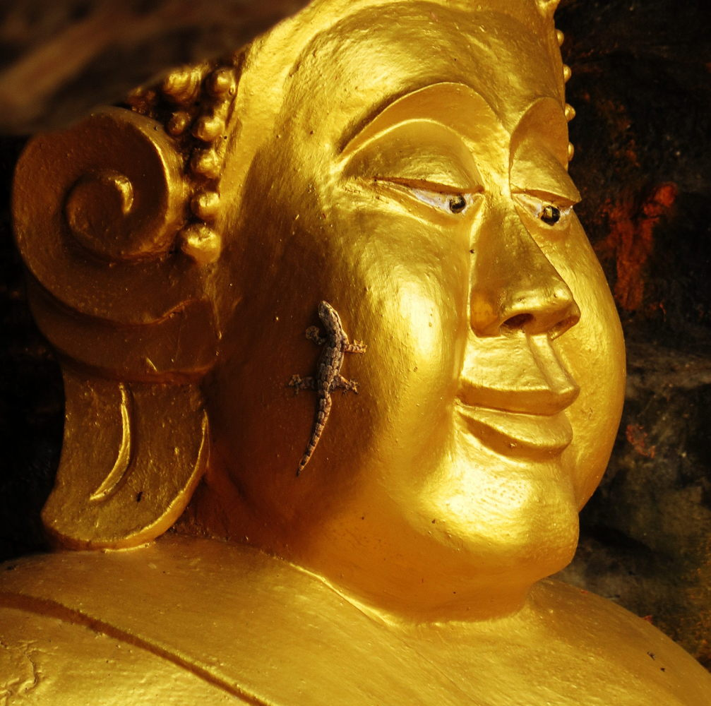 Mutlu Buda