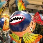 Ubud Dalışı (mavi testere balığı)